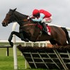 Betfair pins €25m Leopardstown blunder on 'obvious technical fault'