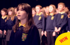 This little girl from Co Down's amazing cover of Hallelujah is going viral around the world