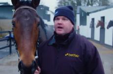 5 Gordon Elliott horses to keep a close eye on over Christmas