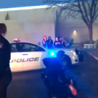 Chaos in US shopping centres: Skirmishes send shoppers scrambling for the doors