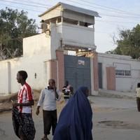 "MSF ""deeply shocked"" by staff killings"