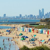 'It's bird, dog, horse, cow, and people poo': Swimmers warned to stay out of the water near Melbourne