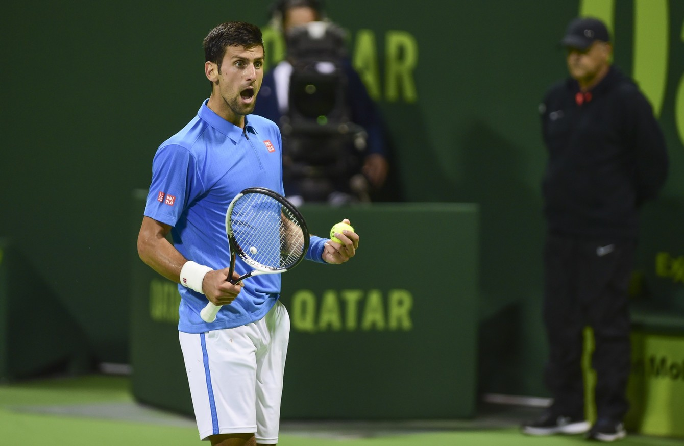 Djokovic Admits Unacceptable To Hit Ball Into Qatar Crowd The42