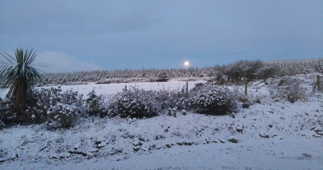 In photos: Ireland woke up to some stunning snow this morning