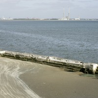 E-coli outbreak in Dublin's Blackrock and Seapoint
