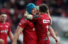 Irishman Tadhg Beirne thriving with new lease of life at the Scarlets