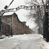Preserving a dark history - the conservation project at Nazi Germany's most notorious death camp