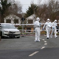 Lucan murder victim may have been stabbed and run over with car