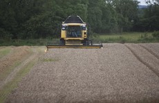Tillage farmers call for 'humanitarian' relief after the loss of entire crops in dire harvest