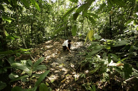 An activist from the Amazon Defense Coalition, looks at oil remains over a well that was repaired by Texaco during its operation in Ecuador's Sucumbios province.
