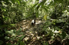 Court upholds ruling that Chevron must pay $18bn for Amazon pollution