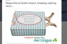 Backlash after Ryanair mocks Aer Lingus link to illegal immigrants