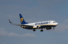 Disabled people stage protest against Ryanair in Spain for 'systematic discrimination'