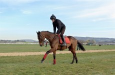 Mullins 'absolutely delighted' by Hurricane Fly workout