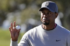 Take the weekend off: Tiger's comeback stalls as he misses Torrey Pines cut