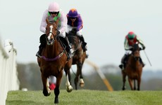 Faugheen's Cheltenham in doubt as he's pulled from Irish Champion Hurdle