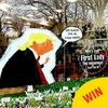 A Baggot Street florist has brilliantly taken the piss out of Trump with their Valentine's display
