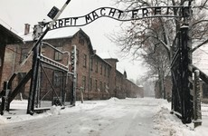 Personal details of 10,000 Auschwitz staff members published online