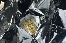 Gardaí seize over €3 million of cannabis after Ashbourne raid