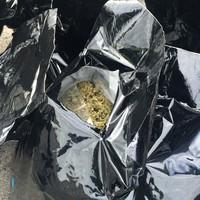 Gardaí seize over €3 million of cannabis after Ashbourne raid
