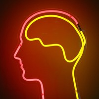 Infographic: The differences between left and right brain people