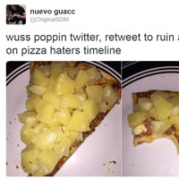 A photo of a pizza slice with a rake of pineapple on it has given Twitter conniptions