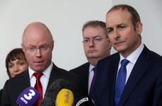 When asked why Fianna Fáil, Stephen Donnelly says 'we need new thinking'