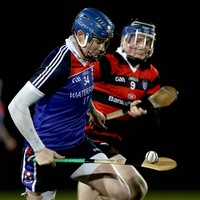 Austin Gleeson back from suspension as WIT win while Mary I and IT Carlow draw