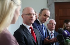 """Donnelly says he was """"eviscerated"""" online after joining Fianna Fáil"""