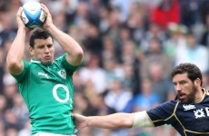 Thinning out: Ireland's back row resources are set to be tested