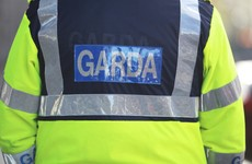 Another garda whistleblower says Tusla investigation also opened in his case