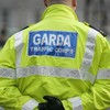 International policing expert to carry out 'root-and-branch' review of An Garda Síochána