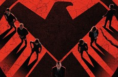 Why your next TV binge should be... Marvel's Agents of SHIELD