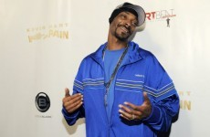 Snoop Dogg arrested on same Texan route as Willie Nelson