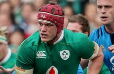Van der Flier, Carbery and Dillane not included in Ireland squad to face France