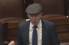 'The rhododendrons are taking over': Healy-Rae says army should be sent to Killarney National Park