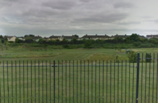 Woman attacked by dog in public park loses €60k damages claim against council