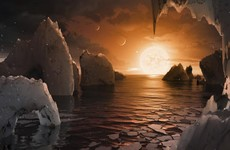 In major announcement, Nasa confirms seven Earth-like planets have been discovered