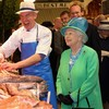 Tour groups must book visits to English Market or 'traders could be in jeopardy'