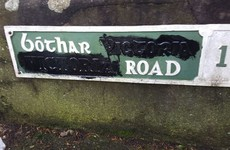 Cork councillor says he was called a 'stupid eejit' by gardaí after British street signs protest