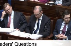 As it happened: McDonald says Coveney's 'tough guy stance' on water has more to do with FG leadership