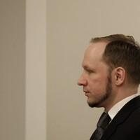 Norwegian mass killer Breivik loses case against his solitary confinement