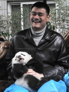 Picture of the day: China's retired NBA star Yao Ming... and a panda