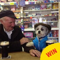 The great story behind *that* photo of a dog and an auld lad having a Guinness