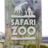 UK zoo to shut down after 500 animal deaths