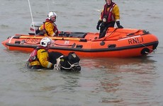 No bull: RNLI tasked to rescue cattle which had fallen from a cliff