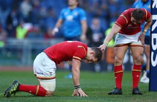 Reports of George North's demise are greatly exaggerated, says Schmidt