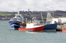 Why is the government arguing to let UK boats fish off Ireland's coasts?