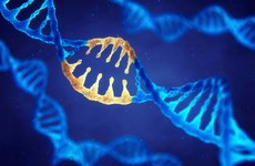 Gene that causes sudden death in young people identified