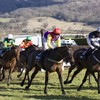 'They're not your friend': Warning over bookmakers as Cheltenham festival begins